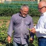 el-diputado-provincial-de-iu-intercambia-ideas-con-un-agricultor-gaditano