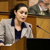 inmaculada-nieto-en-la-tribuna-del-parlamento-andaluz