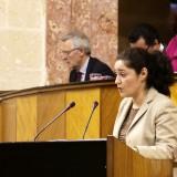 la-parlamentaria-inmaculada-nieto-durante-un-pleno-del-parlamento-andaluz-1