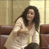 nieto-hoy-en-el-pleno-del-parlamento-andaluz