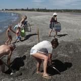 imagen-publicada-en-europa-sur-de-voluntarios-retirando-arena-en-la-desembocadura-del-guadiaro