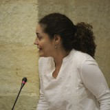 nieto-en-la-sesion-plenaria-de-hoy