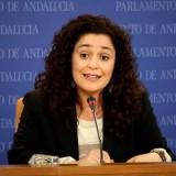 nieto-en-una-comparecencia-en-parlamento-andaluz